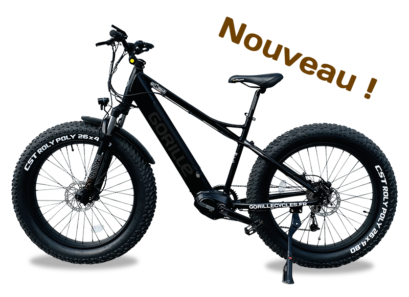 Gorille Athlète VTT Gorille Cycles